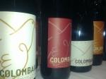 Colombaia