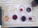 Turska vina