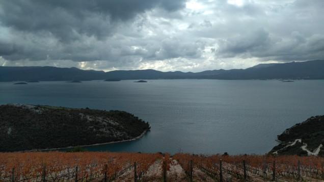 volarevic_pogled-s-vinograda-1