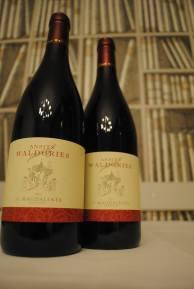 alto-adige-sudtirol-zaokruzen-spoj-vinskih-kultura-5