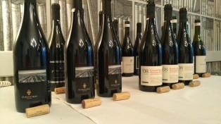 buonsangue-toci-vino-1