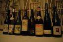 terroirska-vina-1