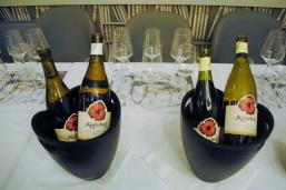 vinski-zacin-na-francuski-nacin-3